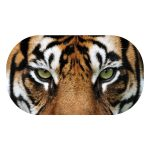 CoolStuff_tiger_OVAL